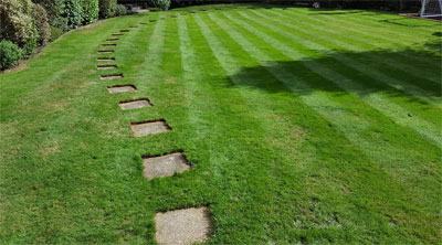 lawn cutting in slough